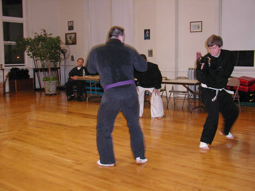 adult karate sparring class greenfield ma