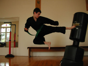 boy flying side kick greenfield ma