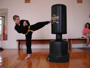 boy karate roundhouse kick